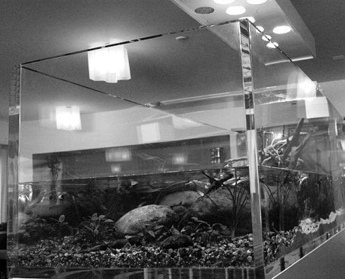 Aquarium Acrylique en Plexiglas PMMA