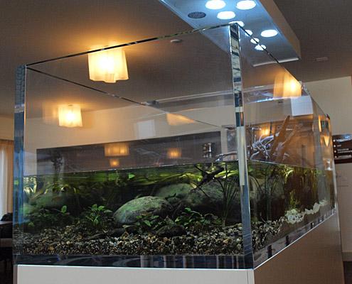 Cuve Acryliques Plexiglass sur Mesure